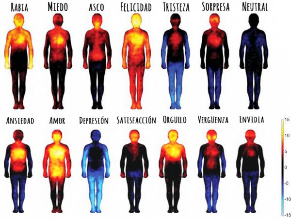 Mapa De Las Emociones.El Mapa De Las Emociones Segun Donde Las Sientes En Tu Cuerpo